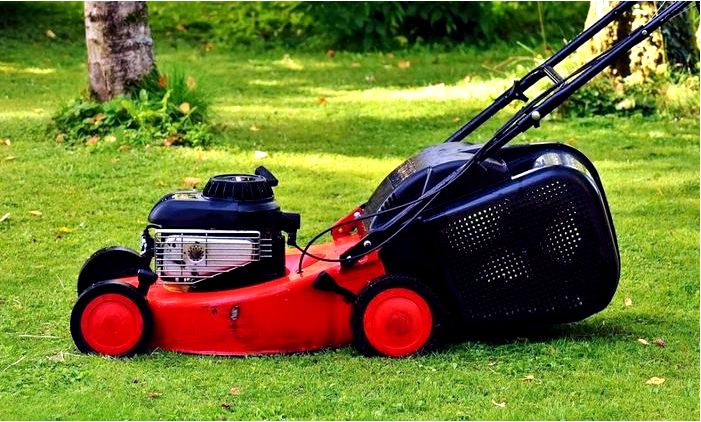 Женщина в саду - как выбрать газонокосилку для женщины?
